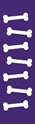 "Picture of Identification Sheet Tape - Patterned Purple/White Bones, 1/4"" x 374"""
