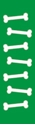 """Picture of Identification Sheet Tape - Patterned Green/White Bones, 1/4"""" x 374"""""""