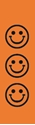 "Picture of Identification Sheet Tape - Patterned Orange/Black Smiley Faces, 1/4"" x 374"""
